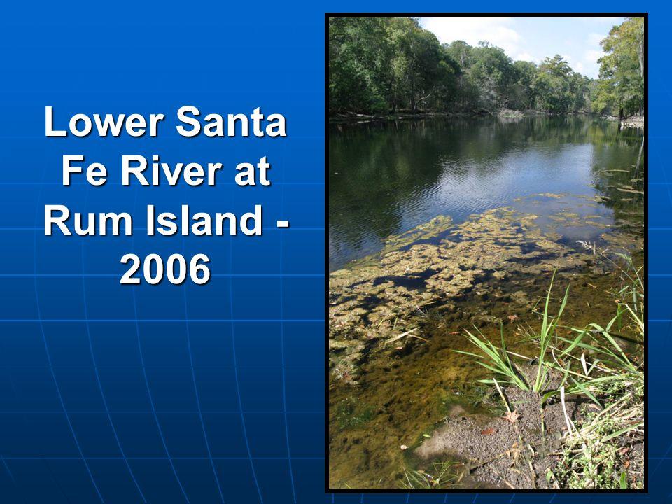 Lower Santa Fe River at Rum Island - 2006