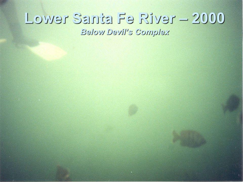 Lower Santa Fe River – 2000 Below Devil's Complex