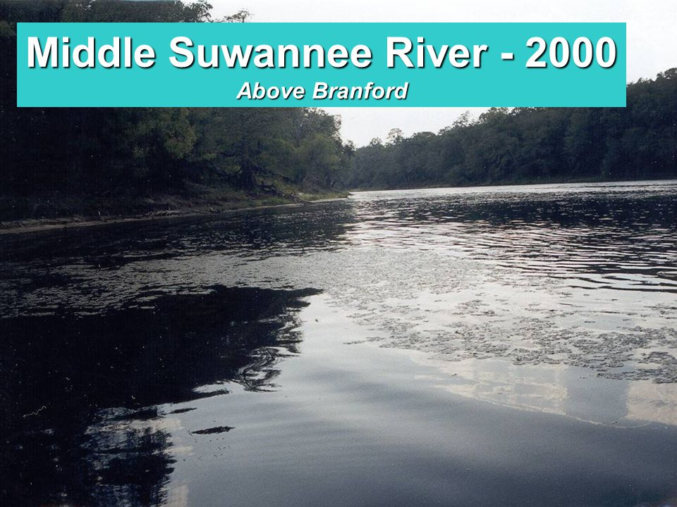 Lower Santa Fe River - 2001