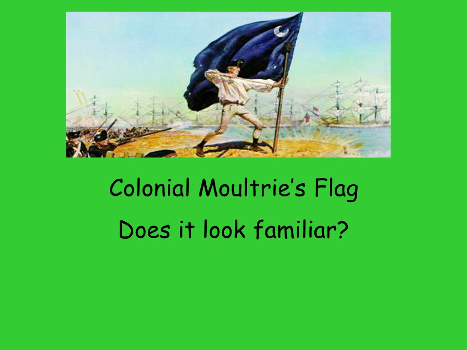 Colonial Moultrie's Flag Does it look familiar?