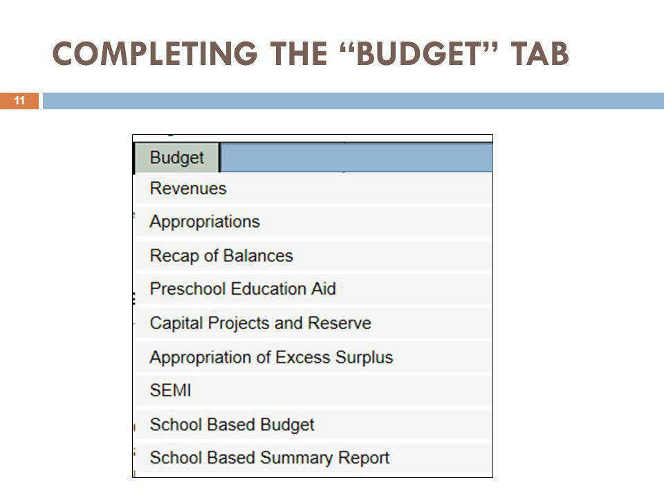 """COMPLETING THE """"BUDGET"""" TAB 11"""