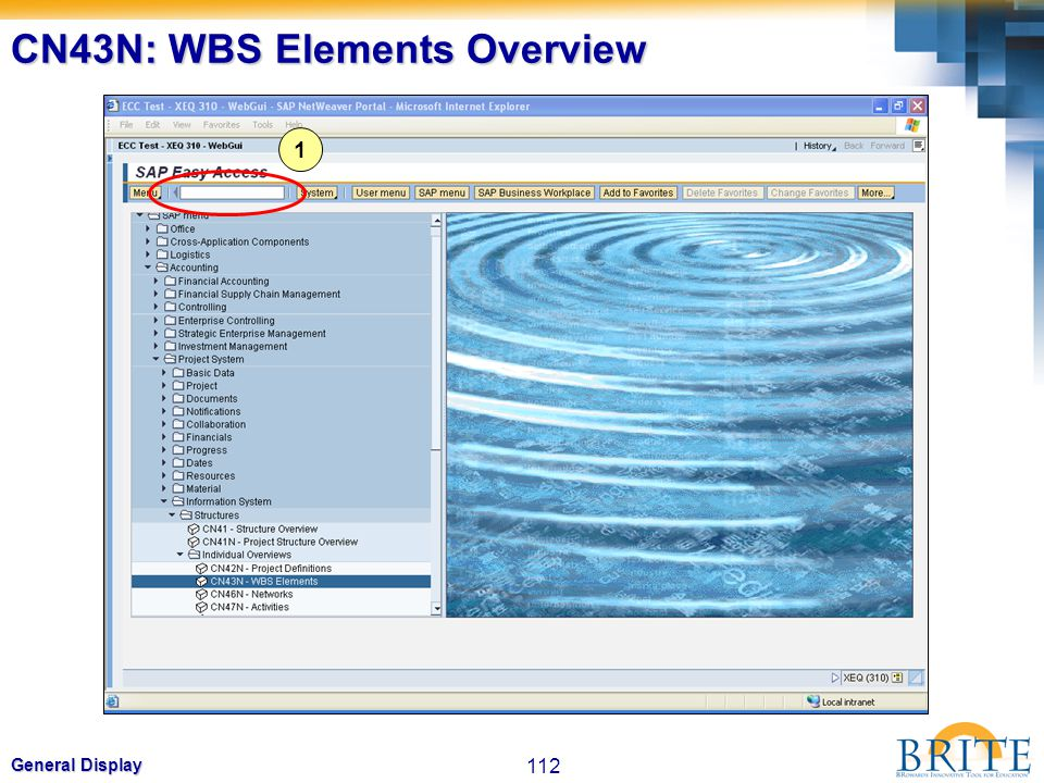 112 General Display CN43N: WBS Elements Overview 1