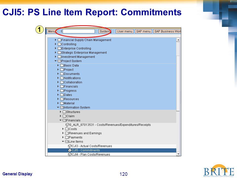 120 General Display 1 CJI5: PS Line Item Report: Commitments