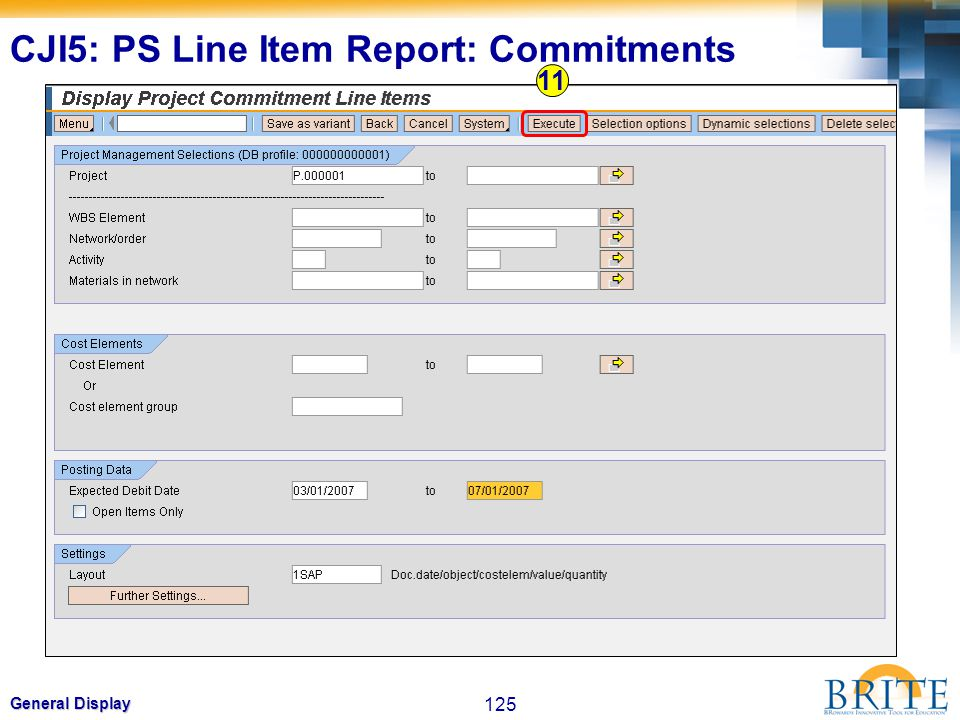 125 General Display 11 CJI5: PS Line Item Report: Commitments