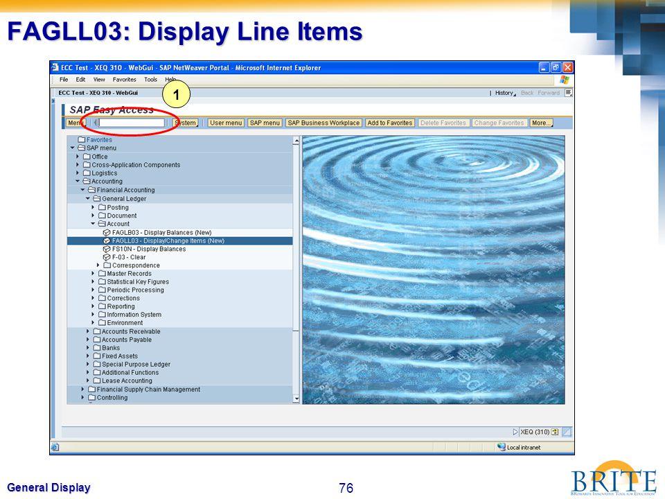 76 General Display FAGLL03: Display Line Items 1