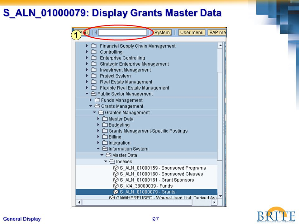 97 General Display S_ALN_01000079: Display Grants Master Data 1