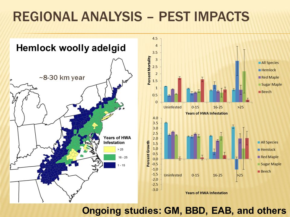 REGIONAL ANALYSIS – PEST IMPACTS Hemlock woolly adelgid ~8-30 km year Ongoing studies: GM, BBD, EAB, and others