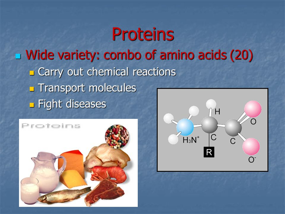 Proteins Wide variety: combo of amino acids (20) Wide variety: combo of amino acids (20) Carry out chemical reactions Carry out chemical reactions Tra
