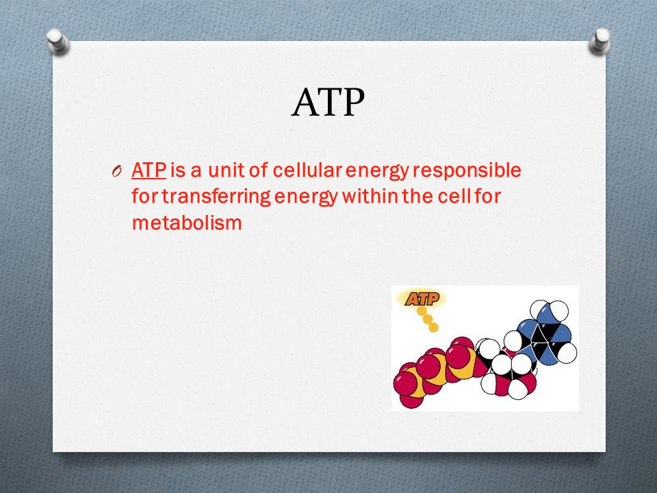 ATP O ATP is a unit of cellular energy responsible for transferring energy within the cell for metabolism