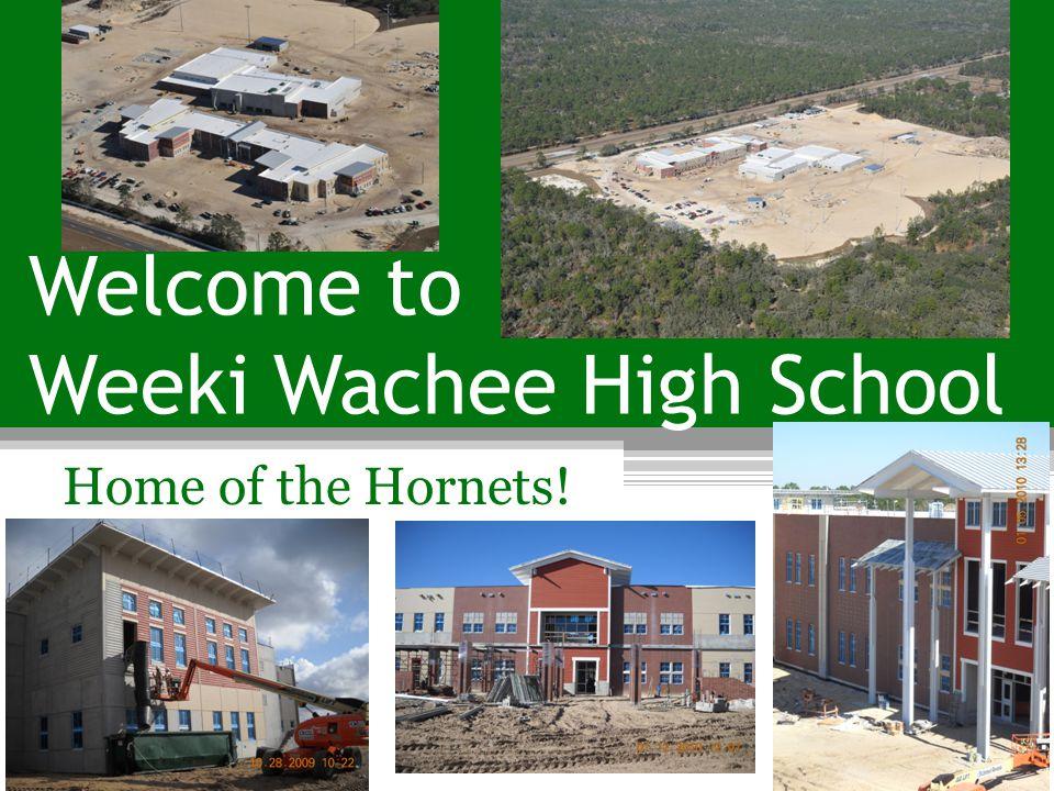 Welcome to Weeki Wachee High School Home of the Hornets!