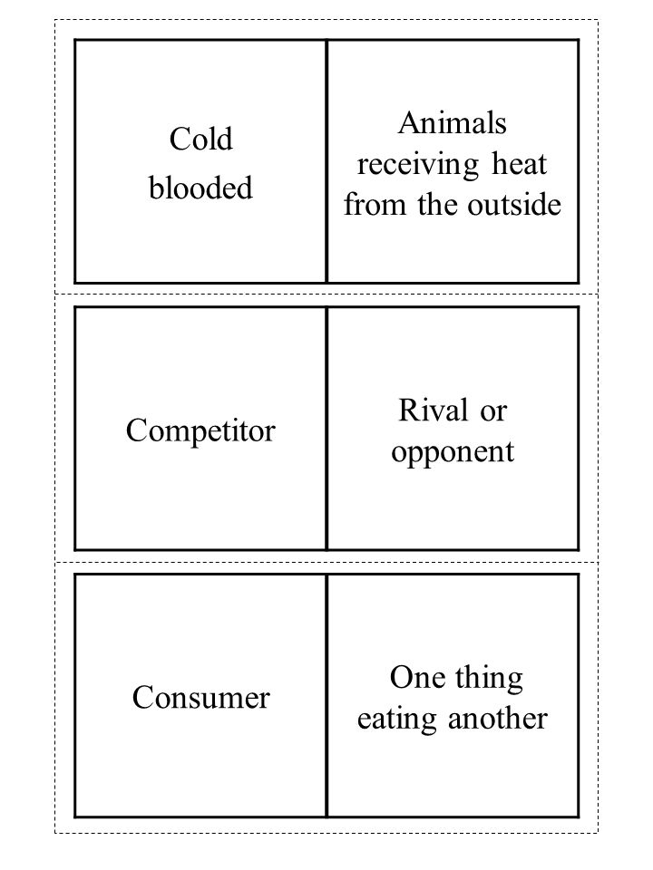 Consumer One thing eating another Competitor Rival or opponent Cold blooded Animals receiving heat from the outside