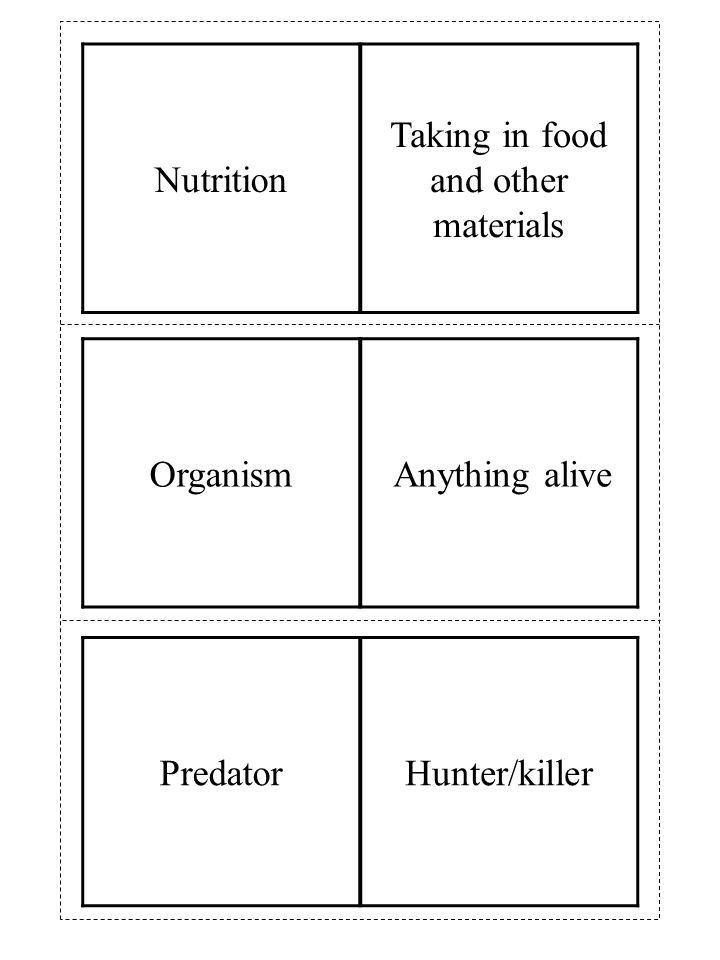 Organism Anything alive Nutrition Taking in food and other materials PredatorHunter/killer