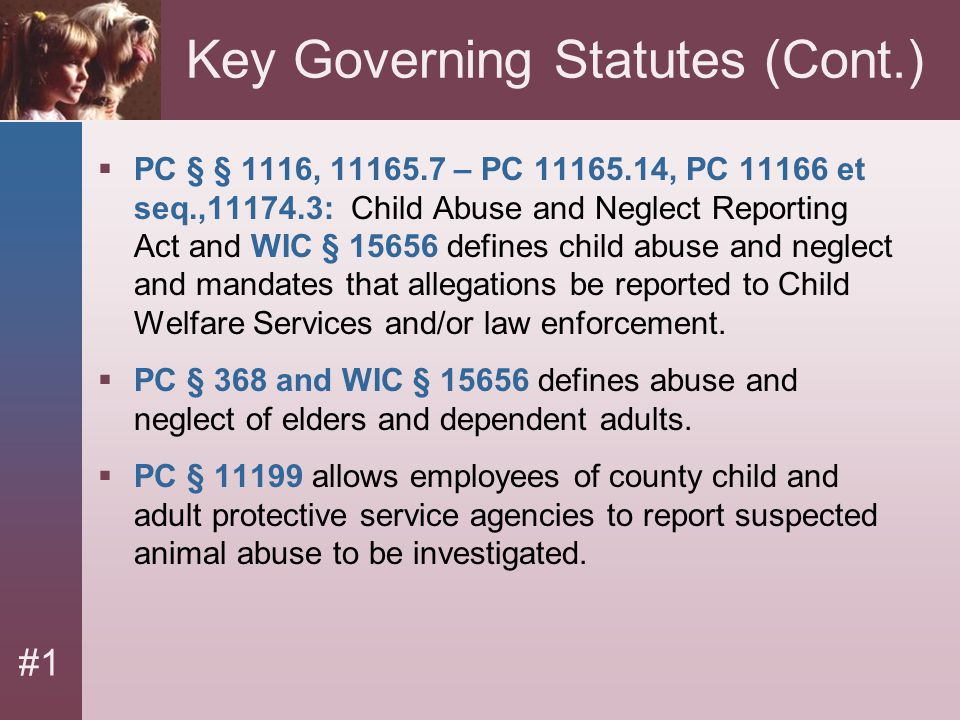 #1 Key Governing Statutes (Cont.)  PC § § 1116, 11165.7 – PC 11165.14, PC 11166 et seq.,11174.3: Child Abuse and Neglect Reporting Act and WIC § 1565