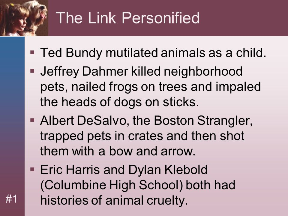 #1 The Link Personified  Ted Bundy mutilated animals as a child.  Jeffrey Dahmer killed neighborhood pets, nailed frogs on trees and impaled the hea