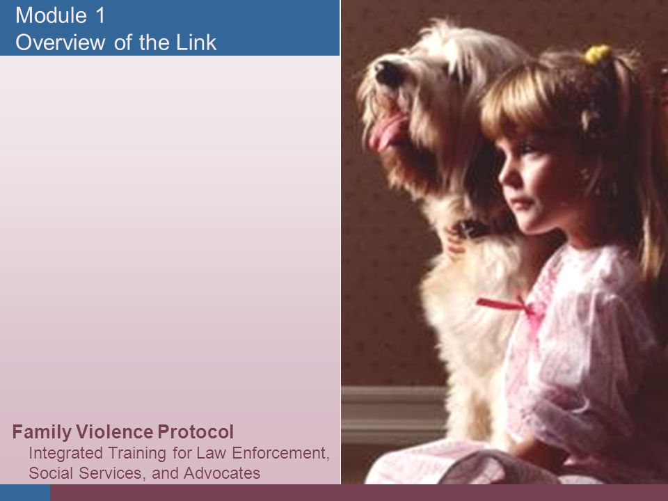 #1 Module 1 Overview of the Link Family Violence Protocol Integrated Training for Law Enforcement, Social Services, and Advocates