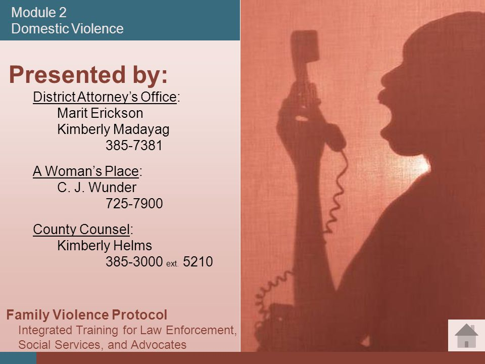 #2 Module 2 Domestic Violence Presented by: District Attorney's Office: Marit Erickson Kimberly Madayag A Woman's Place: C.