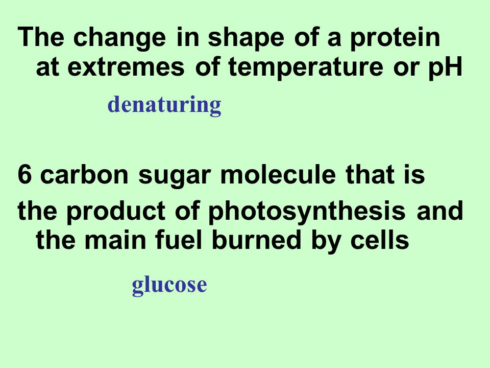 The change in shape of a protein at extremes of temperature or pH 6 carbon sugar molecule that is the product of photosynthesis and the main fuel burn