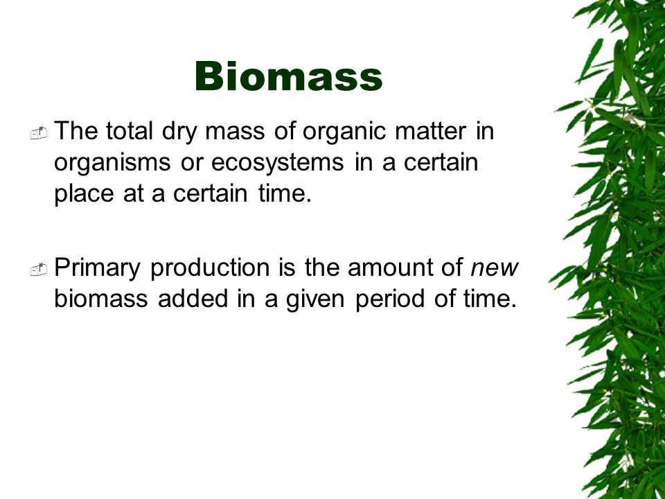 Biomass  The total dry mass of organic matter in organisms or ecosystems in a certain place at a certain time.  Primary production is the amount of