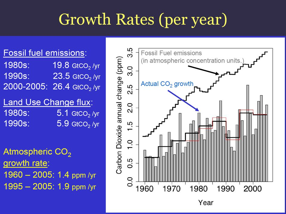 Growth Rates (per year)