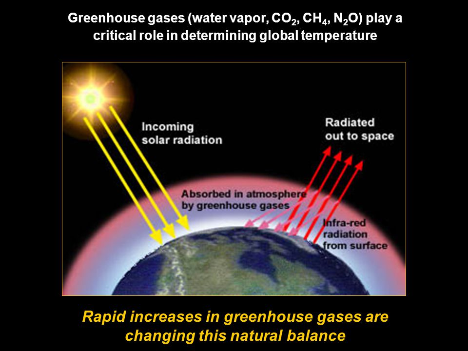 Greenhouse gases (water vapor, CO 2, CH 4, N 2 O) play a critical role in determining global temperature Rapid increases in greenhouse gases are changing this natural balance