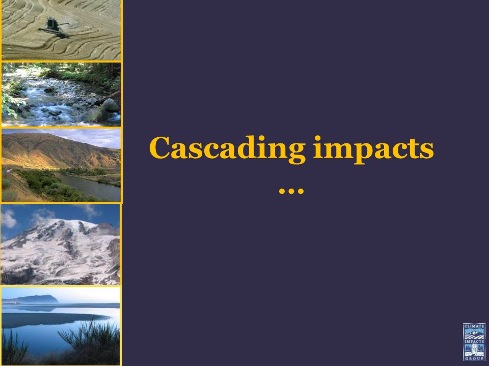 Cascading impacts … UW Climate Impacts Group