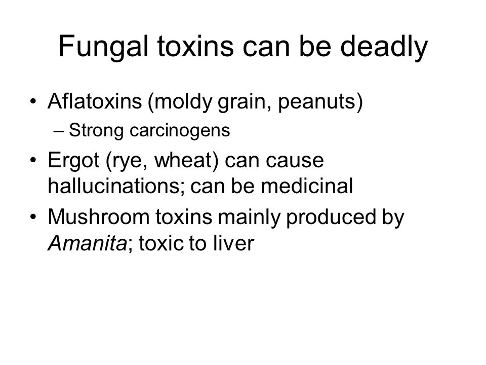 Fungal toxins can be deadly Aflatoxins (moldy grain, peanuts) –Strong carcinogens Ergot (rye, wheat) can cause hallucinations; can be medicinal Mushro