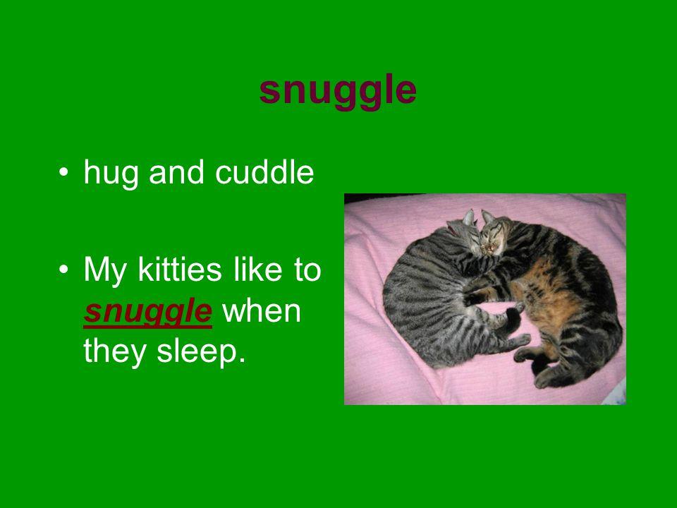snuggle hug and cuddle My kitties like to snuggle when they sleep.
