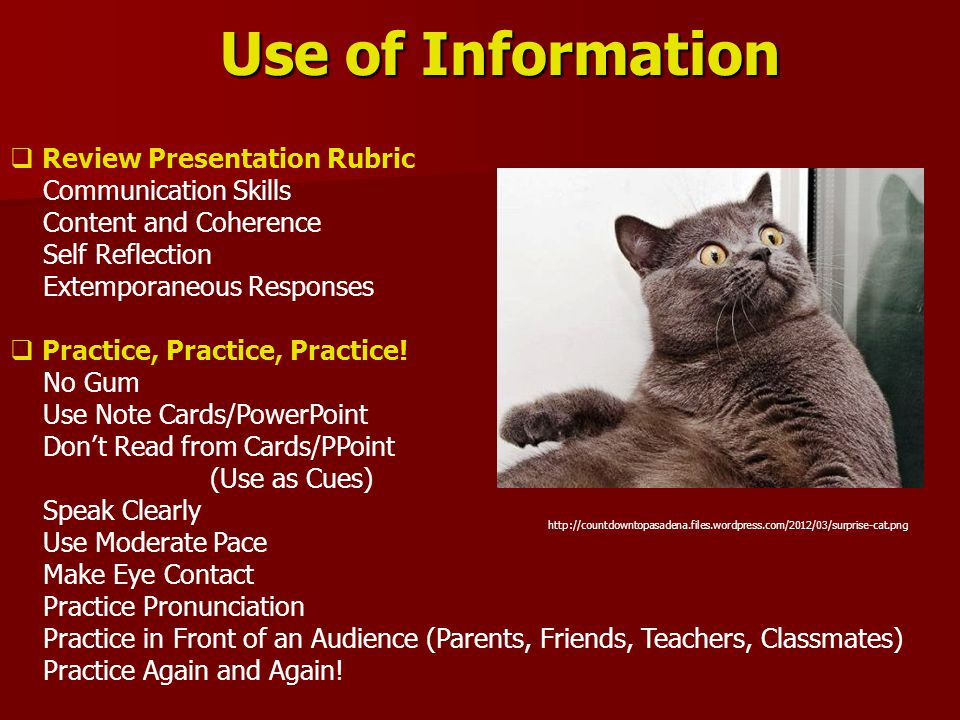 Use of Information  Review Presentation Rubric Communication Skills Content and Coherence Self Reflection Extemporaneous Responses  Practice, Practice, Practice.