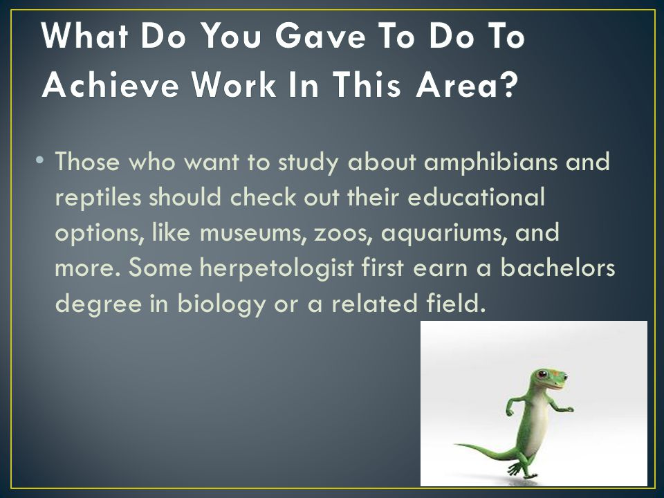 Those who want to study about amphibians and reptiles should check out their educational options, like museums, zoos, aquariums, and more. Some herpet
