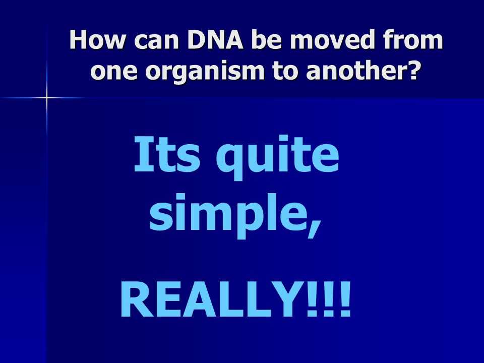 How can DNA be moved from one organism to another? Its quite simple, REALLY!!!