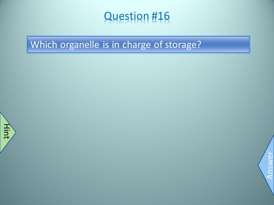 Vacuole Answer Super huge in plants Hint Which organelle is in charge of storage?