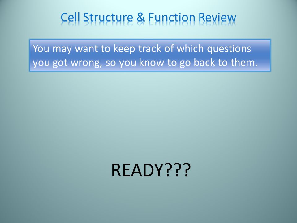 Cellulose Answer It is a sugar Hint The cell wall is a rigid structure because it is primarily made of what molecule?