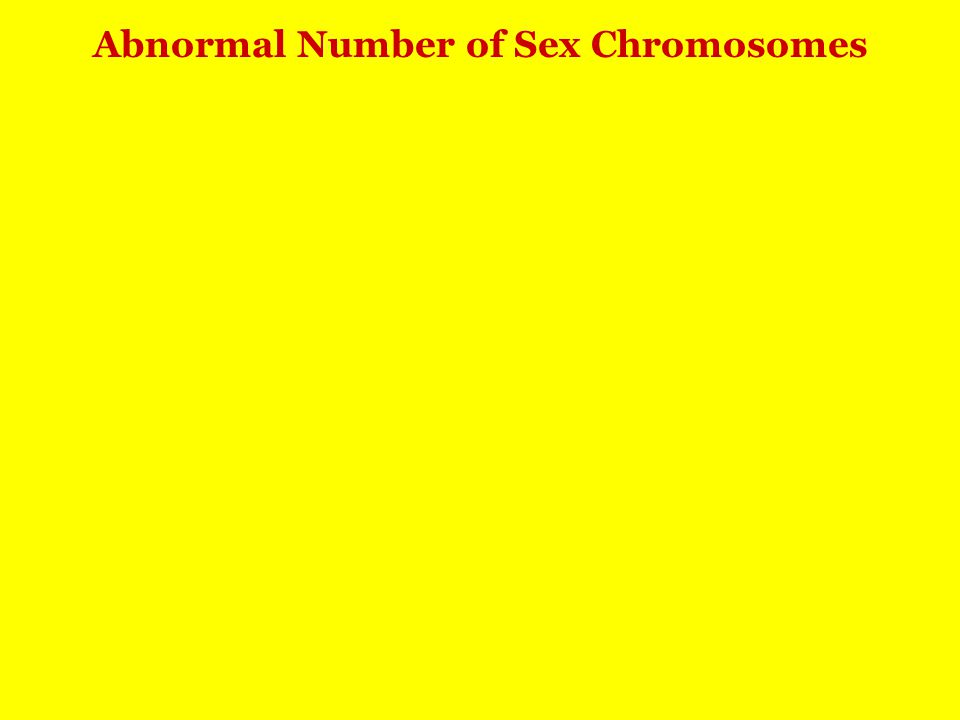 Abnormal Number of Sex Chromosomes