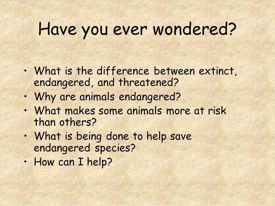 Have you ever wondered.What is the difference between extinct, endangered, and threatened.