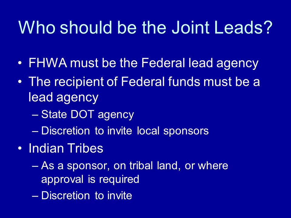 Who should be the Joint Leads.