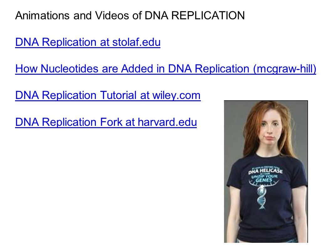 Animations and Videos of DNA REPLICATION DNA Replication at stolaf.edu How Nucleotides are Added in DNA Replication (mcgraw-hill) DNA Replication Tutorial at wiley.com DNA Replication Fork at harvard.edu