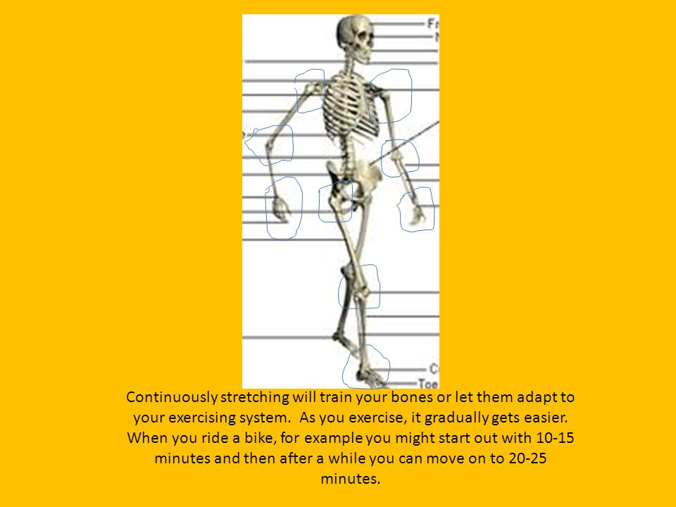 Continuously stretching will train your bones or let them adapt to your exercising system.