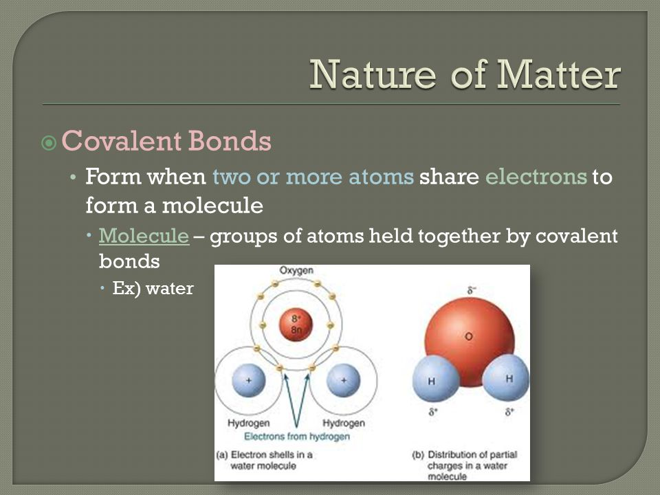  Covalent Bonds Form when two or more atoms share electrons to form a molecule  Molecule – groups of atoms held together by covalent bonds  Ex) wat