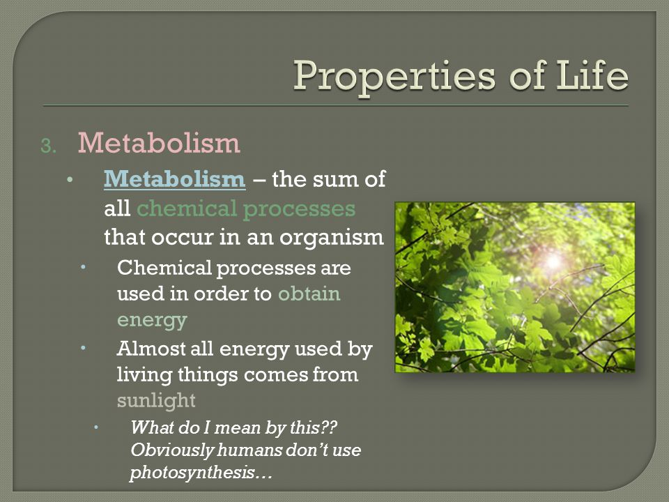 3. Metabolism Metabolism – the sum of all chemical processes that occur in an organism  Chemical processes are used in order to obtain energy  Almos