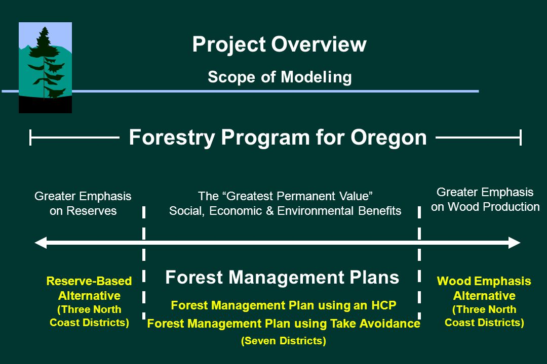 Greater Emphasis on Reserves Greater Emphasis on Wood Production Forestry Program for Oregon Forest Management Plans Forest Management Plan using an HCP Forest Management Plan using Take Avoidance (Seven Districts) Reserve-Based Alternative (Three North Coast Districts) Wood Emphasis Alternative (Three North Coast Districts) Project Overview Scope of Modeling The Greatest Permanent Value Social, Economic & Environmental Benefits