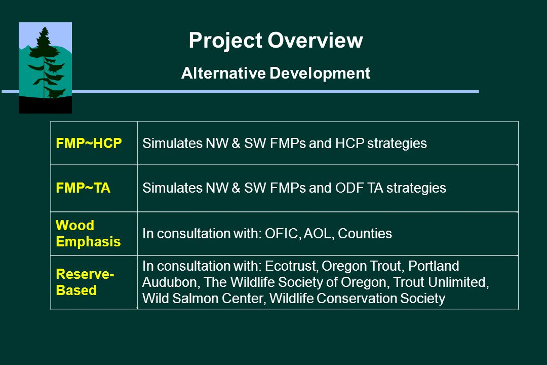 Project Overview Alternative Strategies FMP~HCPFMP~TAWood EmphasisReserve-Based NW/SW FMPs Yes No Yes, Outside Reserves T&E Species Protection HCP, ODF TA 1 st period ODF TA 56-60% Reserves Riparian Strategy NW FMP FPA Modified NW FMP