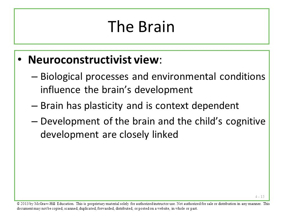4 - 15 The Brain Neuroconstructivist view: – Biological processes and environmental conditions influence the brain's development – Brain has plasticity and is context dependent – Development of the brain and the child's cognitive development are closely linked © 2013 by McGraw-Hill Education.