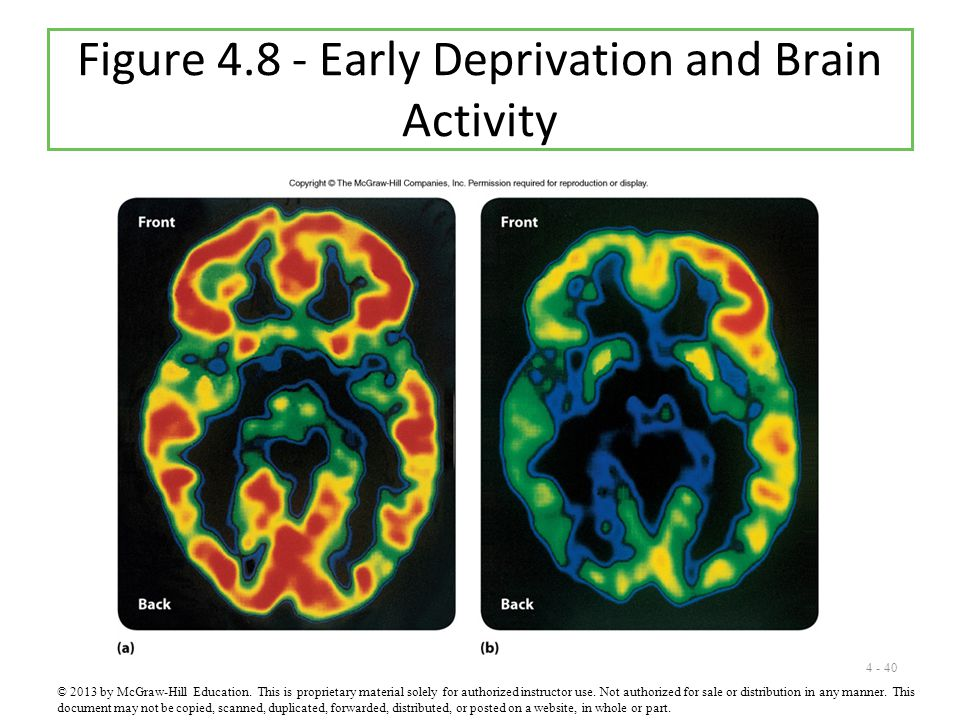 4 - 40 Figure 4.8 - Early Deprivation and Brain Activity © 2013 by McGraw-Hill Education.