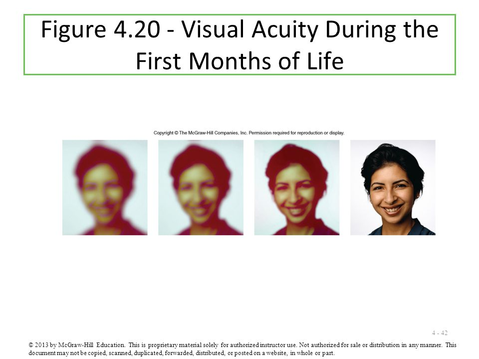 4 - 42 Figure 4.20 - Visual Acuity During the First Months of Life © 2013 by McGraw-Hill Education.