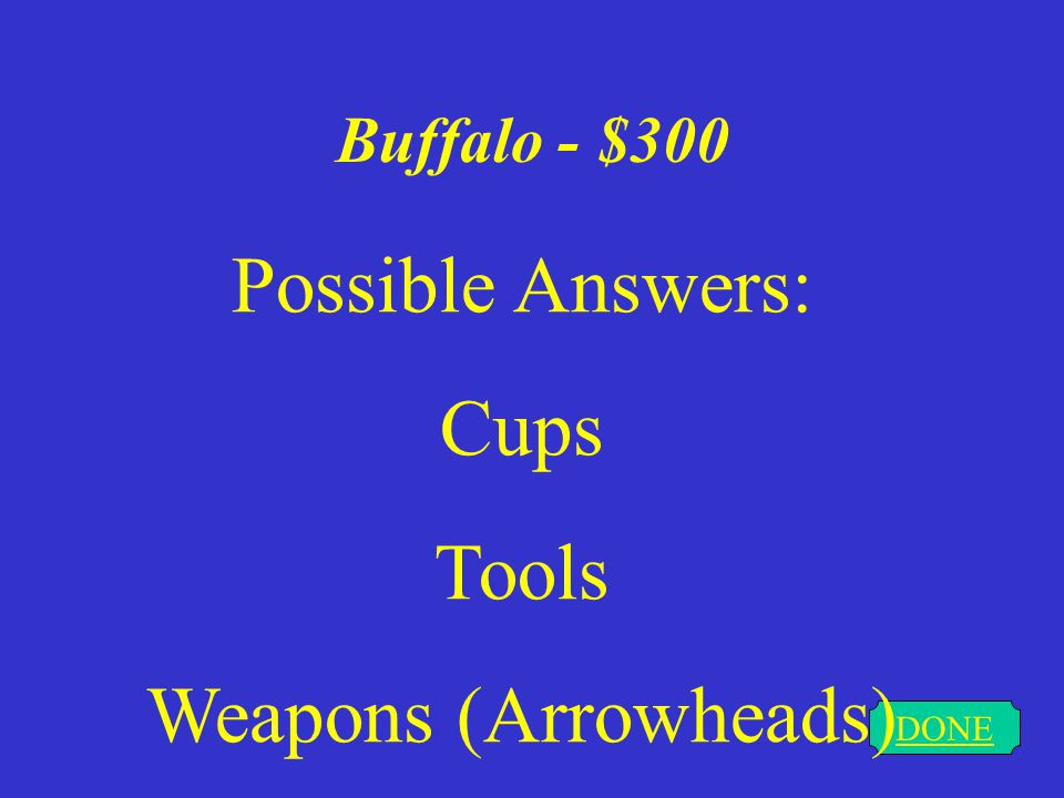 Buffalo - $200 DONE Possible Answers: Flyswatter Paintbrushes Blanket Clothes