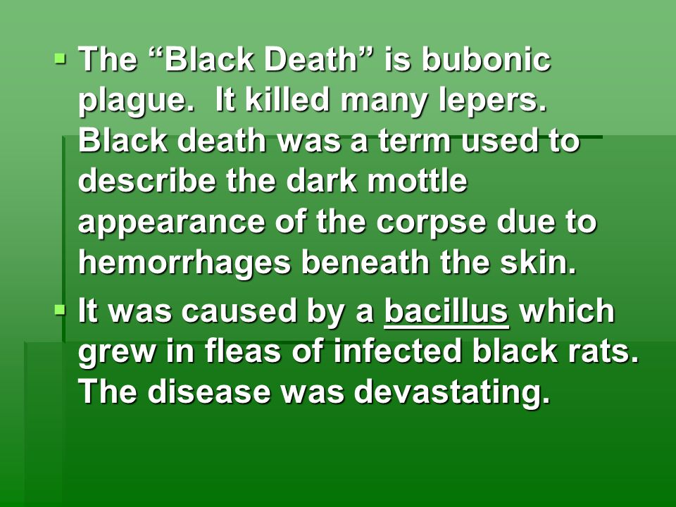  The Black Death is bubonic plague. It killed many lepers.