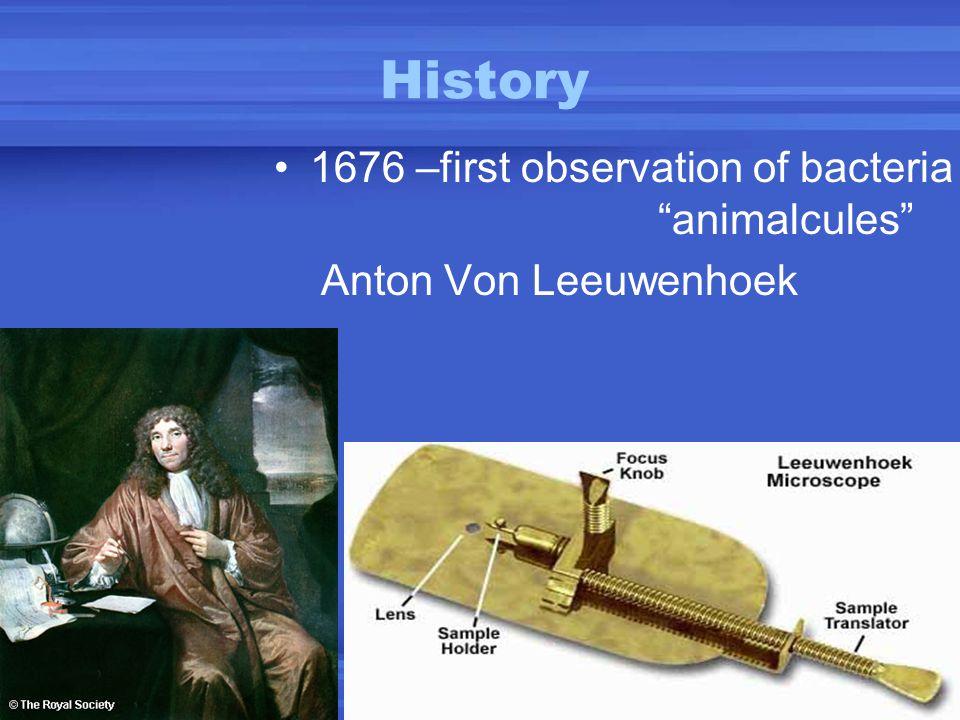 "History 1676 –first observation of bacteria ""animalcules"" Anton Von Leeuwenhoek"