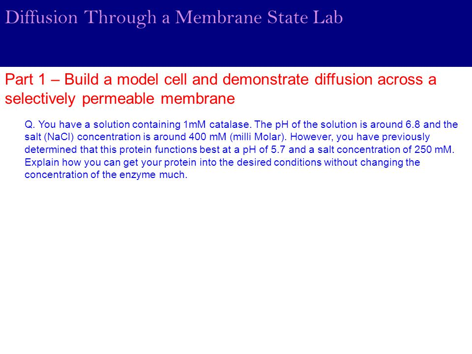 Diffusion Through a Membrane State Lab Part 1 – Build a model cell and demonstrate diffusion across a selectively permeable membrane Q. You have a sol