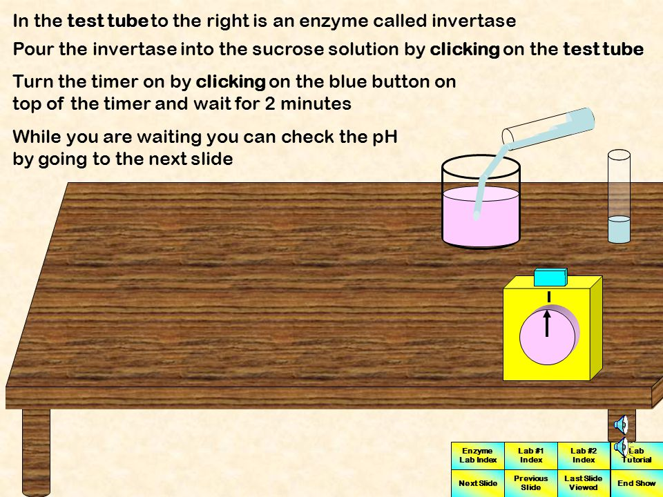 Enzyme Lab Index Lab #1 Index Lab #2 Index Next Slide Previous Slide Last Slide Viewed Lab Tutorial End Show We will be adding an enzyme to the substrate solution (Sucrose) The enzyme we will use is called INVERTASE Invertase is an enzyme which will metabolize or break down sucrose When sucrose is broken down the build up of metabolic by-products causes changes in the density of the sucrose-invertase solution Sucrose solution Invertase The substrate solution we will use is a 90 mM sucrose solution