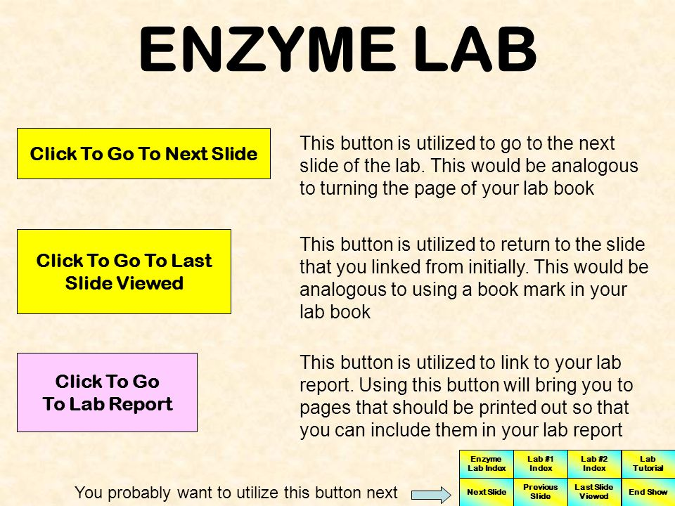 ENZYME LAB Click on each of the buttons that you see below to view description of how each button works Clicking this button will bring you to the Enzyme Lab Tutorial.